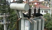 Leylekler Elektrik Kesintilerine Neden Oluyor