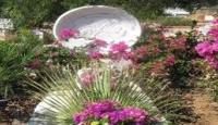 Can Yücel'in Mezarı Tahrip Edildi