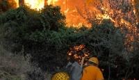 Aydın Nazill'de Korkutan Yangın