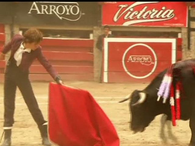 Çocuk Matadorlar Boğalara Meydan Okudu