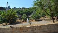 Kastamonu'da bir köy 14 gün karantinaya alındı