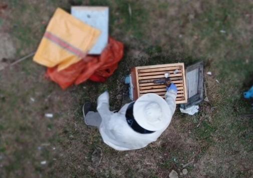 Arı kovanından uyuşturucu ve tabanca çıktı