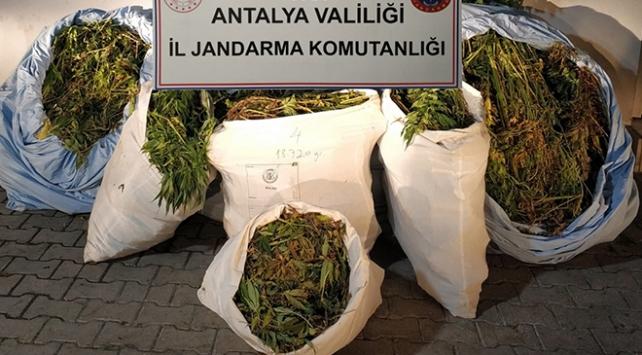 Antalyada 161 kilogram uyuşturucu ele geçirildi