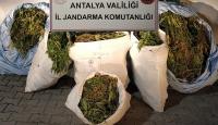 Antalya'da 161 kilogram uyuşturucu ele geçirildi
