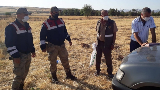Elazığda usulsüz bıldırcın avlayan 9 kişi yakalandı