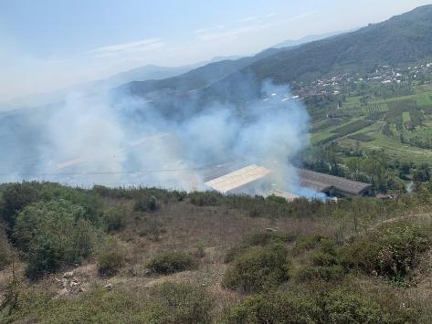 Zonguldakta çalılık yangını kontrol altına alındı