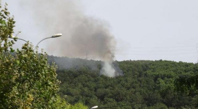 Aydostaki orman yangını söndürüldü