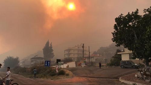 Söke'de makilik alanda başlayan yangın ormana sıçradı