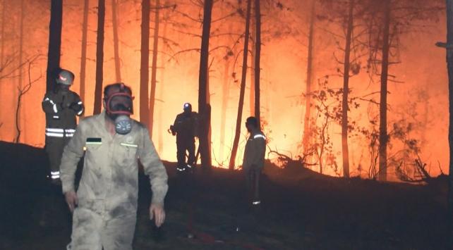 Pendikte ormanlık alanda yangın
