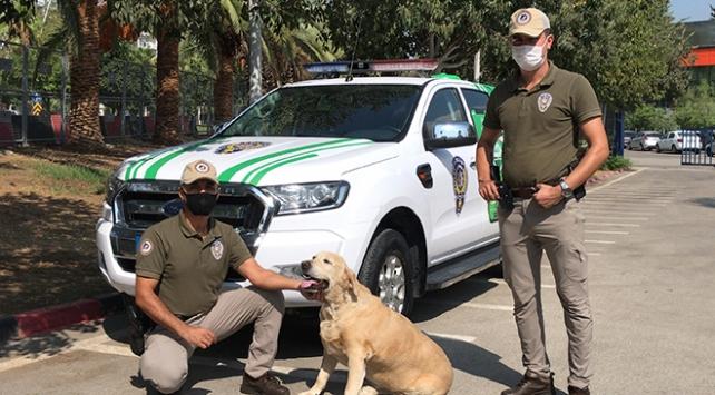 """Adanada """"Çevre, Doğa ve Hayvanları Koruma"""" polisleri göreve başladı"""