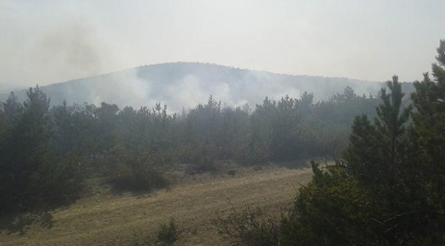 Tokatta orman yangını: 4 noktada sürüyor