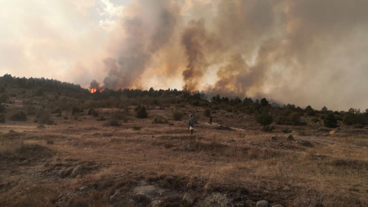 Bolu'da çıkan orman yangınına müdahale ediliyor   TRT Haber Foto Galeri