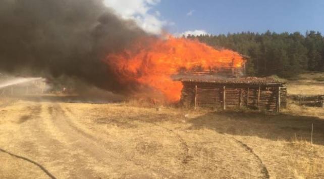Kastamonuda yangın: 6 yayla evi küle döndü
