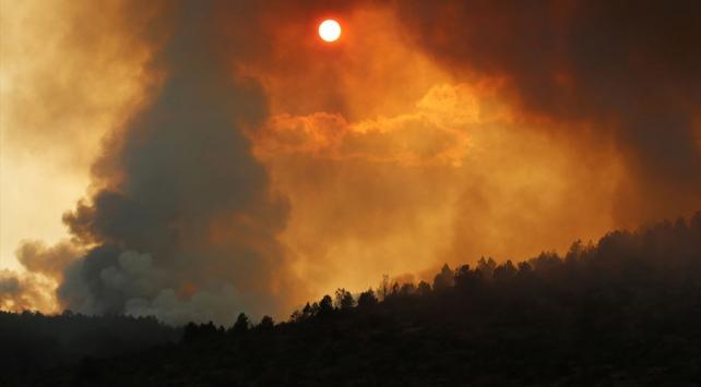 Boluda çıkan orman yangını kısmen kontrol altına alındı