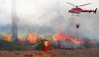 Türkiye'deki orman yangınlarının en büyük sebebi insanlar