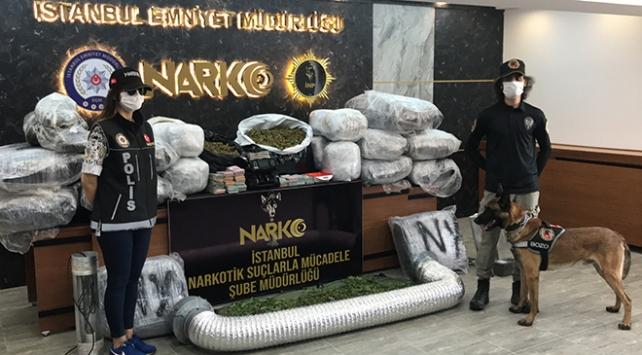 İstanbulda 2 lüks villaya uyuşturucu baskını: 188 kilogram Hint keneviri ele geçirildi