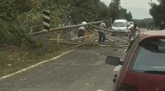Bursada fırtına ağaçları devirdi, yol trafiğe kapandı