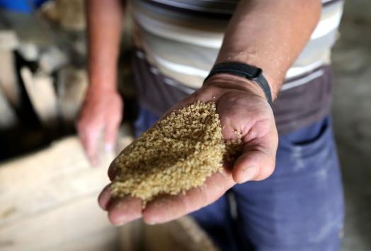 70 yıldır dönen taş değirmenin lezzetli bulguruna gurbetçi ilgisi