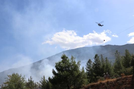 Denizlide çıkan yangında 1 hektar ormanlık alan zarar gördü