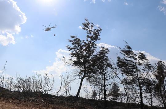 Manisada çıkan orman yangını kontrol altına alındı