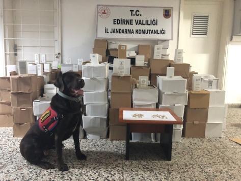 Edirnede otobüsün bagajında 7 bin 391 kaçak parfüm ele geçirildi