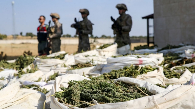 Diyarbakır'da yılbaşından bu yana 42 ton esrar ele geçirildi