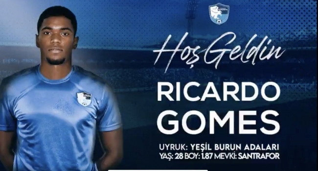 Ricardo Gomes Erzurumsporda