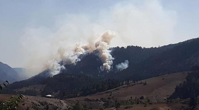 Adanada ormanlık ve otluk alanda yangın