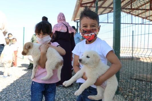 Anaokulu öğrencileri, Sokak Hayvanları Bakım ve Rehabilitasyon Merkezini ziyaret etti