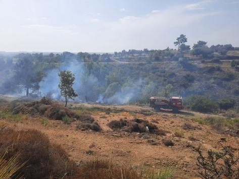 Antalyada havadan ve karadan müdahale edilen orman yangını söndürüldü