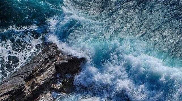 Kamçatka açıklarındaki kirlilik deniz tabanındaki yaşamın yüzde 95ini yok etti