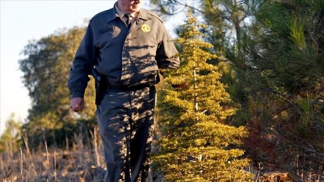 Orman Genel Müdürlüğü 102 sözleşmeli personel alacak