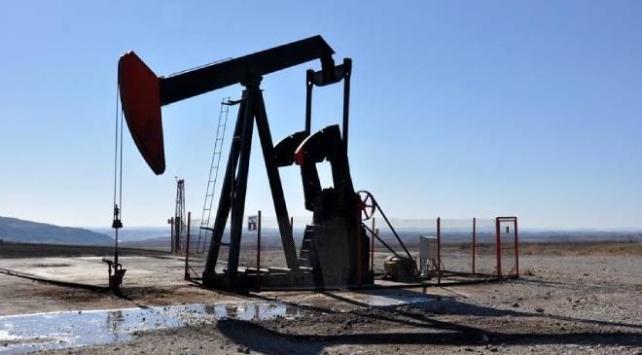 Türkiye Petrollerine 4 petrol arama ruhsatı verildi