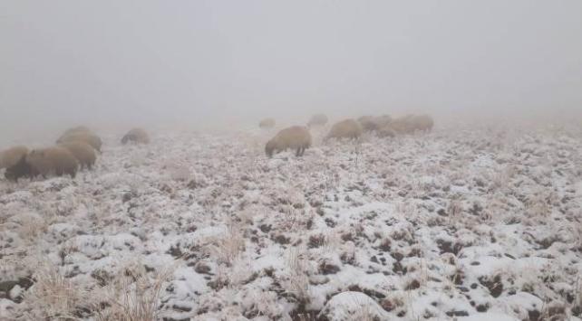 Vanın yüksek kesimlerine kar yağdı
