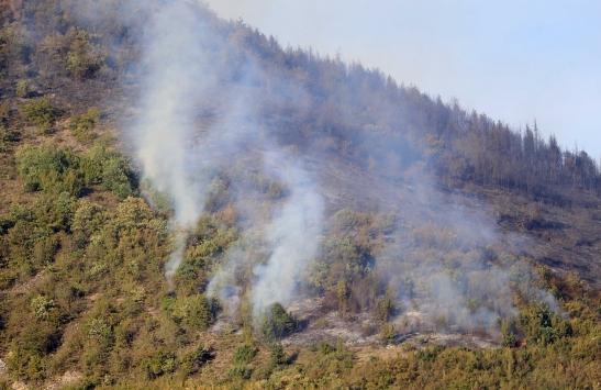 Trabzonda ormanlık alana sıçrayan yangına müdahale ediliyor