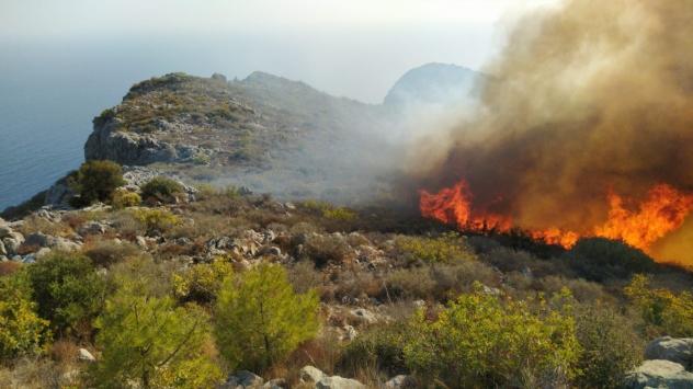 Mersinde çıkan orman yangınına müdahale ediliyor