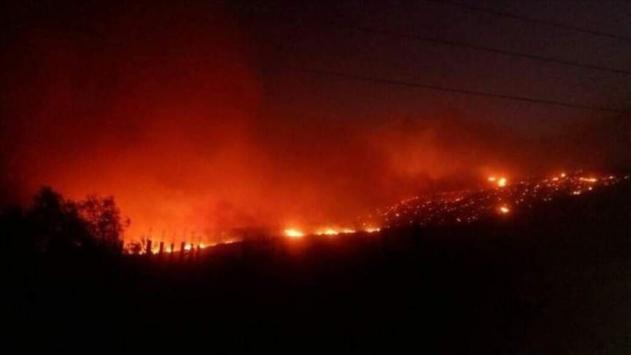 Suriyedeki orman yangınları kontrol altına alınamıyor