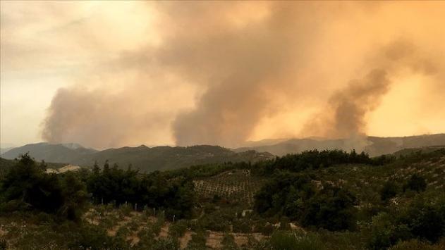 Suriyedeki orman yangınları sürüyor