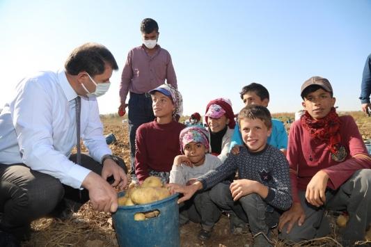 Sivas Valisi Ayhandan tarlada çalışan çocuklara eğitim müjdesi