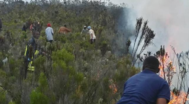 Afrikanın en yüksek dağındaki yangında 500 gönüllü görev yapıyor