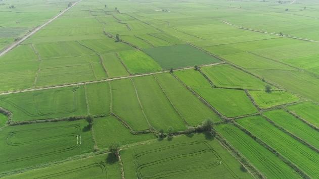 Tarım ve Orman Bakanlığından Edirneye 3 milyar 240 milyon liralık yatırım ve destek
