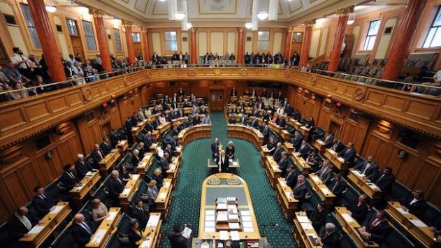 Eritreli mülteci, temizlikçi olarak geldiği Yeni Zelandada milletvekili oldu