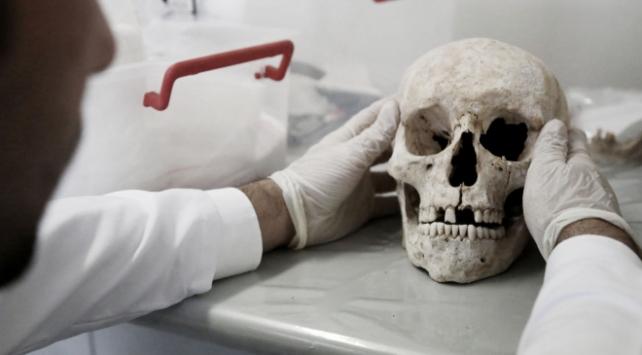 Bilim insanları açıkladı: Kafatasında yeni bir organ bulundu
