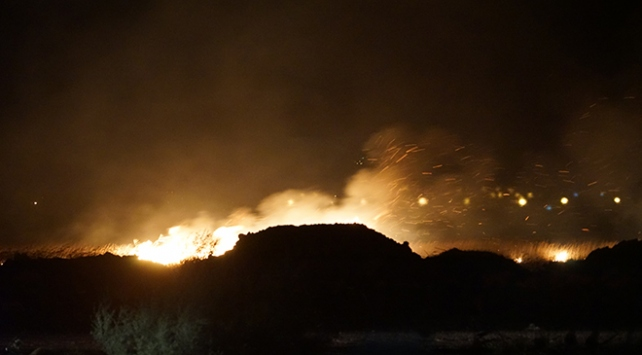 Balıkesirde sazlık yangını