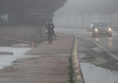 Sakaryada yoğun sis etkili oldu