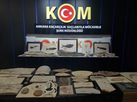 Adnan Oktarın Ankaradaki evlerinden milyon dolarlık fosiller çıktı