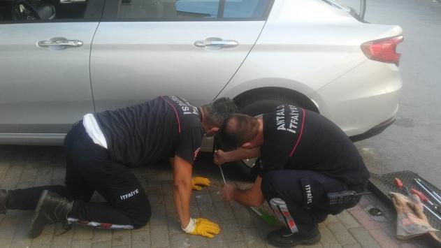 Antalyada otomobilin çamurluk kısmına sıkışan kedi kurtarıldı