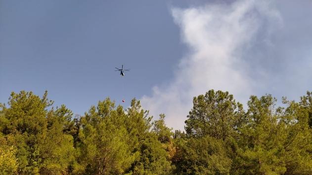 Adanada çıkan orman yangınına müdahale ediliyor