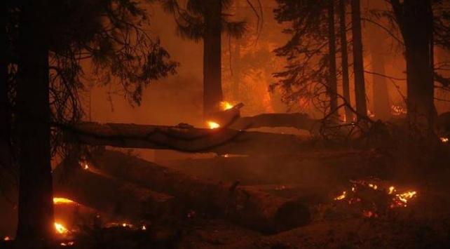 Colorado eyaletindeki yangınlar durdurulamıyor