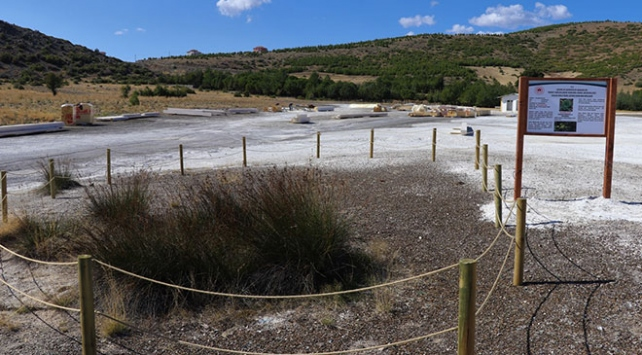 Salda Gölüne özgü 2 bitki koruma altına alındı